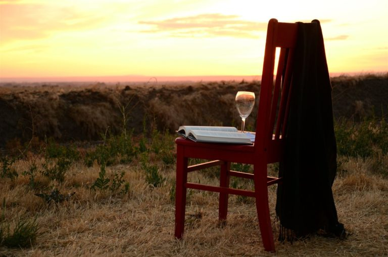 Chair with glass, book on seat and light blanket hanging off the top right side of the chair's back in field with seedling trees, forest and sunset in the background